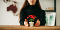 female with flower pot on desk - PhotoDune Item for Sale