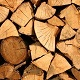 Collect Wood