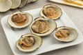 Cooked spisula solida or surf clams - PhotoDune Item for Sale