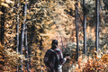 Autumn girl standing backwards and watching nature. Autumn forest colors with girl back view - PhotoDune Item for Sale