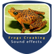 Frogs Croaking Sounds