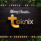 Christmas Logo Intro - VideoHive Item for Sale
