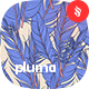 Pluma - Feathers Vector Seamless Patterns - GraphicRiver Item for Sale