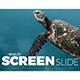 Multi Screen Slide - VideoHive Item for Sale