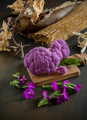 type colored purple violet cabbage on autumnal background - PhotoDune Item for Sale