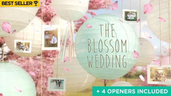 Wedding Slideshow by Cream-Motion