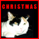 We Wish You a Merry Christmas - AudioJungle Item for Sale