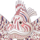 Lionfish Pterois - GraphicRiver Item for Sale