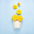 Snack in bloom. - PhotoDune Item for Sale