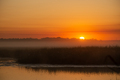 Moorland - PhotoDune Item for Sale