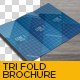 Trifold Brochure Mockup 01 - GraphicRiver Item for Sale