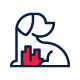 PetCity - GraphicRiver Item for Sale