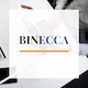 Binecca - Business PowerPoint Template - GraphicRiver Item for Sale
