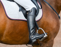 Jockey riding boot in the stirrup. - PhotoDune Item for Sale