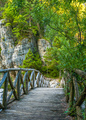 Wooden bridge and stones on the background of green trees - PhotoDune Item for Sale