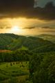 Rural landscape - PhotoDune Item for Sale