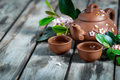 Tea and spring blossom background - PhotoDune Item for Sale