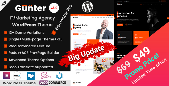 Gunter - IT & Marketing Agency WordPress Theme