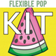 Fun Pop Kit