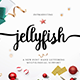 Jellyfish Script Font - GraphicRiver Item for Sale