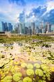 Singapore skyline and Marina Bay district - PhotoDune Item for Sale