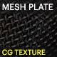 Mesh Plate - 3DOcean Item for Sale