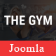 TheGym - Yoga, Fitness & Accessories Shop Joomla Template - ThemeForest Item for Sale