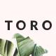 Toro – Minimal eCommerce HTML Template - ThemeForest Item for Sale