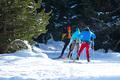 Group of Nordic skiers - PhotoDune Item for Sale