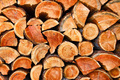 Chopped dry wood logs - PhotoDune Item for Sale