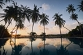 Swimming pool in the middle of coconut palm trees - PhotoDune Item for Sale
