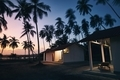 Bungalows under coconut palm trees - PhotoDune Item for Sale