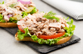 Tuna sandwiches with lettuce tomatoes pickles and onions on slate tray - PhotoDune Item for Sale