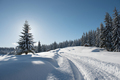 Alpine Landscape with Snow Covered Fir Trees at Winter - PhotoDune Item for Sale