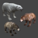 3 BEARS Pack - polar brown black - game ready lowpoly - 3DOcean Item for Sale