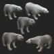 Polar Bear - high quality lowpoly game ready - 3DOcean Item for Sale