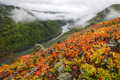 Some Low Clouds glide through a Canyon with Forests on one Shore and Vineyards on the other - PhotoDune Item for Sale