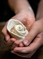 Chinese dumpling shaped into rose - PhotoDune Item for Sale