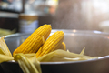 Steamed corn on the market in China - PhotoDune Item for Sale