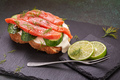 Salted salmon sandwich - PhotoDune Item for Sale
