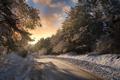 Winter road - PhotoDune Item for Sale