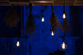 Hanging glowing led bulbs in the dark - PhotoDune Item for Sale