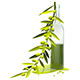 3D Illustration Olive Branch and Bottle with Oil - GraphicRiver Item for Sale