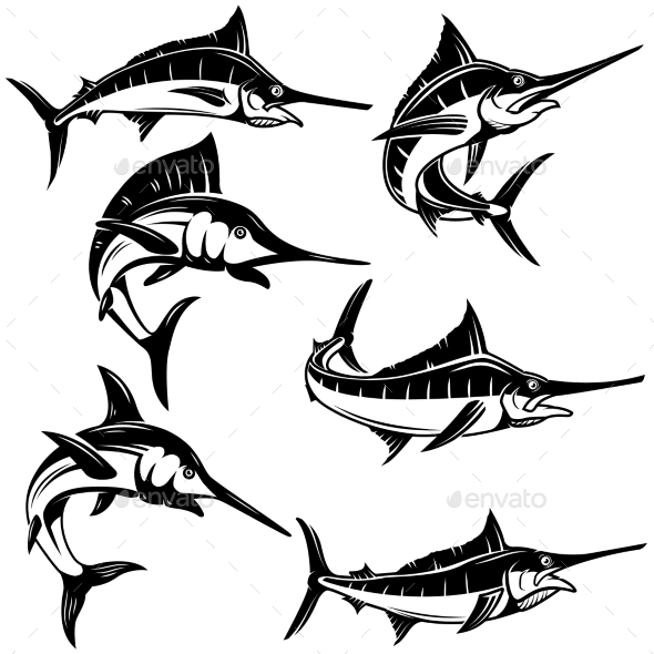 Set of Marlin, Swordfish Illustrations