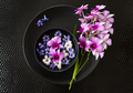 Fresh orchids and hyacinths - PhotoDune Item for Sale