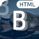 Bitcon - Bitcoin HTML5 Template - ThemeForest Item for Sale