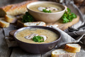 Mushroom soup - PhotoDune Item for Sale