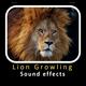 Lion Growling Sounds