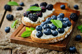 Blueberry and blackberry ricotta rye sandwiches - PhotoDune Item for Sale