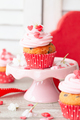 Pink cupcakes - PhotoDune Item for Sale